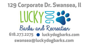 Lucky Dogs Barks and Recreation